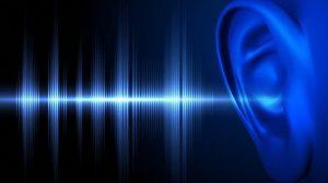ses bilgisi